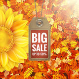 Zonnebloem op de herfstgebladerte met verkoopmarkering Eps 10 Stock Fotografie