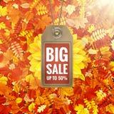 Zonnebloem op de herfstgebladerte met verkoopmarkering Eps 10 Stock Foto's