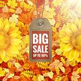 Zonnebloem op de herfstgebladerte met verkoopmarkering Eps 10 Stock Afbeeldingen