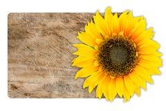 Zonnebloem op houten textuur Stock Afbeelding