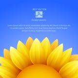 Zonnebloemachtergrond met blauwe hemel, vector stock illustratie