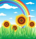 zonnebloemen royalty-vrije illustratie