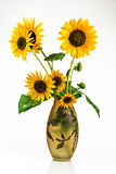 zonnebloemen Royalty-vrije Stock Foto