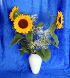 Zonnebloemen 3 stock afbeeldingen