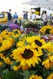 Zonnebloemen bij de markt Royalty-vrije Stock Afbeeldingen