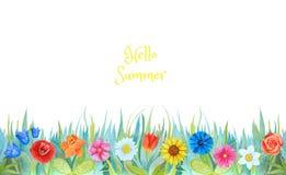 Zonnebloemen, blubells, lelies, rozen en andere die bloemen op witte achtergrond worden geïsoleerd royalty-vrije illustratie
