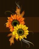 Zonnebloemen en Bladeren Stock Fotografie