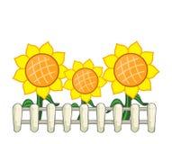 Zonnebloemen en omheining Royalty-vrije Stock Afbeelding