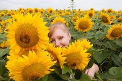 Zonnebloemen en vrouw 1 Stock Fotografie