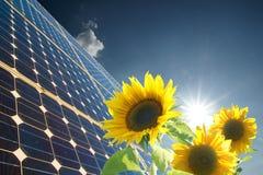Zonnebloemen en zonnepaneel Stock Fotografie