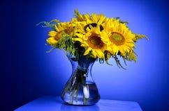 Zonnebloemen in glas transparante vaas Stock Afbeeldingen