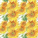 Zonnebloemen Hand geschilderde waterverfillustratie Naadloos patroon met bloemen stock illustratie