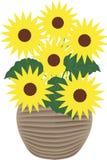 Zonnebloemen - illustratie Stock Afbeelding
