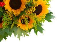 Zonnebloemen met groene bladeren Royalty-vrije Stock Fotografie