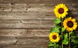 Zonnebloemen op houten raad Stock Afbeeldingen