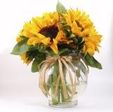 Zonnebloemen in Vaas Stock Foto