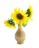 Zonnebloemen in vaas op wit Royalty-vrije Stock Afbeeldingen