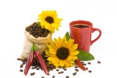 Zonnebloemen 5 van de Coffeebeanskop Stock Foto's