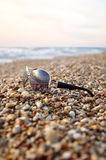 Zonnebril bij strandzand stock foto