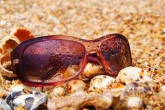 zonnebril die op gele overzeese stenen liggen stock fotografie