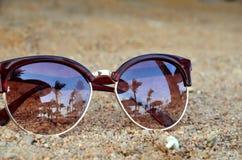 Zonnebril in zand Stock Foto's