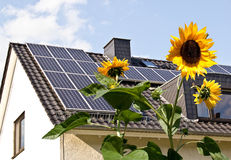 Zonnecellen op een dak met zonbloemen Stock Afbeelding