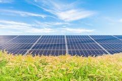 Zonnemachtspanelen, Photovoltaic modules voor innovatie groene en Stock Afbeelding