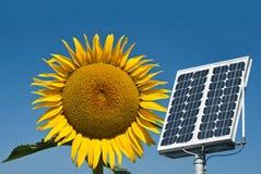 Zonnepaneel en zonnebloem, de toekomstige energie Royalty-vrije Stock Foto's