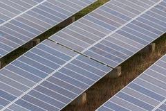 Zonnepaneellandbouwbedrijf Stock Afbeeldingen
