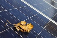 Zonnepanelen in de herfst stock foto's