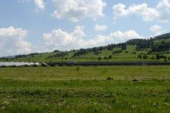 Zonnepost op heterostructural modules in het Mayminsky-district van de Republiek van Altai stock foto's