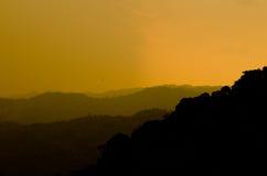 Zonneschijn in bos Royalty-vrije Stock Fotografie