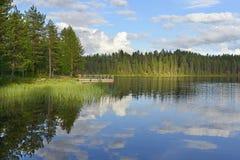 Zonneschijn op het meer Stock Foto's
