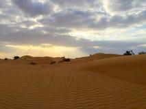 Zonneschijn op het zand van Doubai Royalty-vrije Stock Foto's