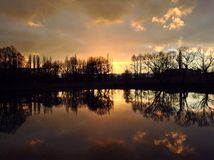 Zonneschijn in park Royalty-vrije Stock Fotografie