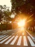 Zonneschijn, Weg naar paradijs, Huatulco, México Stock Foto's