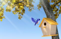 Zonneschijndag in de herfst met duidelijke blauwe hemel, blauwe vogel die in houten vogelhuis onder geel-bladboom nestelen Royalty-vrije Stock Afbeelding