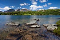 Zonneschijnweiden in het Nationale Park van Banff, Alberta royalty-vrije stock fotografie
