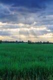 Zonnestraal achter de wolk stock fotografie