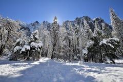 Zonnestraal bij Sneeuw Behandelde Yosemite-Vallei bij het Nationale Park van Yosemite stock afbeelding