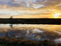 zonnestraal in het moeras royalty-vrije stock afbeeldingen