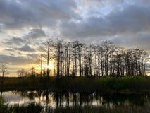 zonnestraal in het moeras royalty-vrije stock fotografie