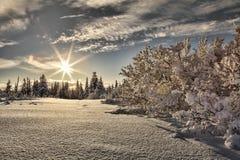 Zonnestraal met sneeuw royalty-vrije stock afbeelding