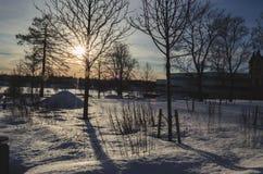 Zonnestraal throgh boom en schaduw op de sneeuw met een aardige snowscape royalty-vrije stock afbeeldingen
