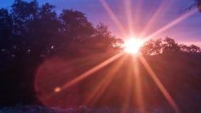 Zonnestralen in de ochtend Royalty-vrije Stock Afbeeldingen