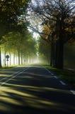 Zonnestralen op de weg Royalty-vrije Stock Fotografie