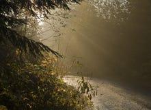 Zonnestralen op een landweg Stock Foto