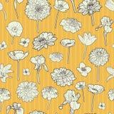 Zonnig de herfst bloemenpatroon Stock Foto's
