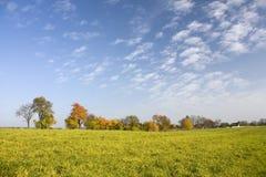 Zonnig de herfstlandschap Stock Foto's