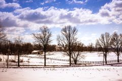 Zonnig de winterlandbouwbedrijf in de zonneschijn stock foto's